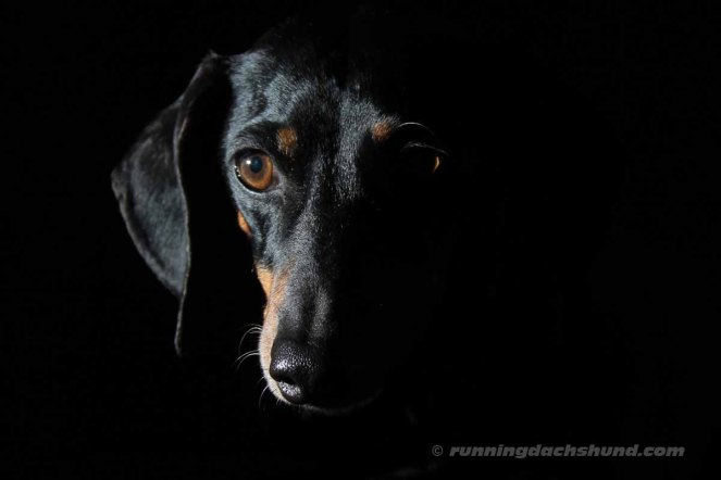 BlackArtPhoto10