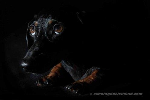 BlackArtPhoto11