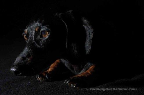 BlackArtPhoto12