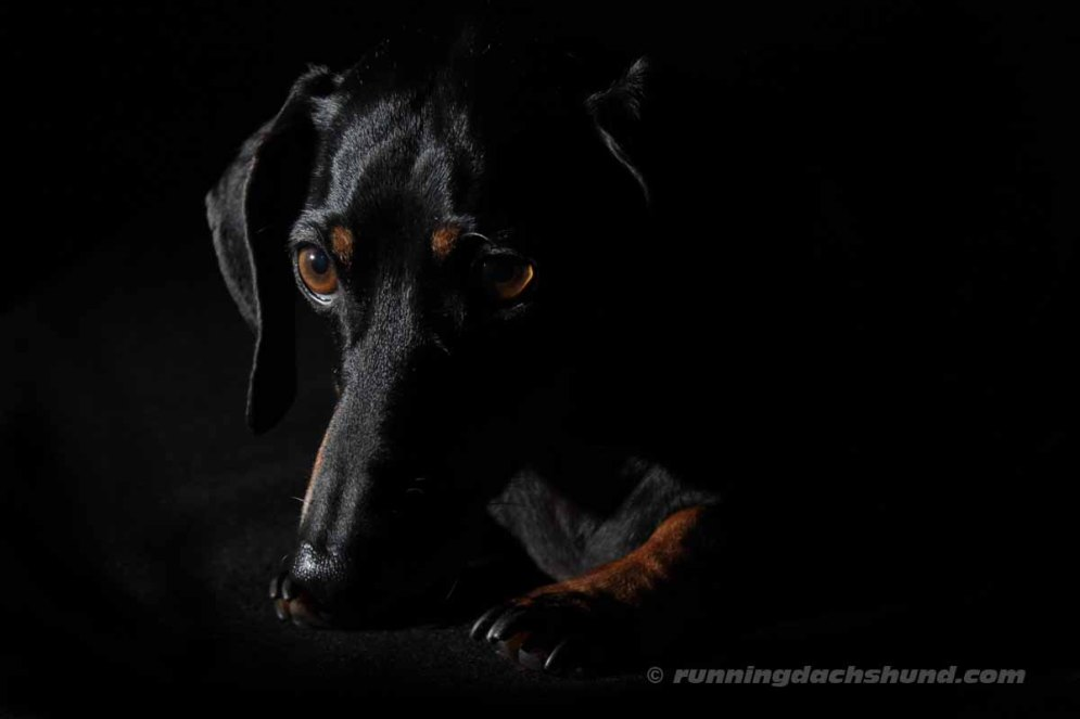 BlackArtPhoto13