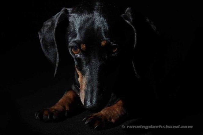 BlackArtPhoto2