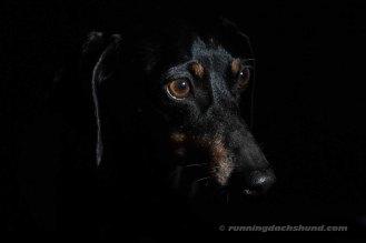 BlackArtPhoto3