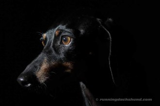BlackArtPhoto5