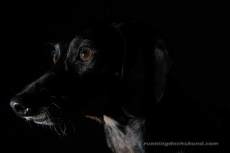 BlackArtPhoto6