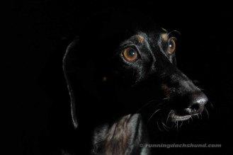 BlackArtPhoto7