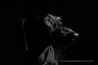 BlackArtPhoto8