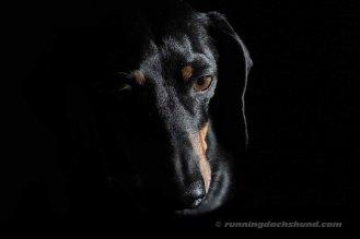 BlackArtPhoto9